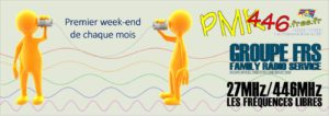 Read more about the article Réseautage des Weekends PMR446