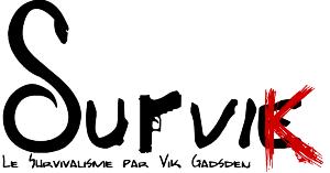 Survik.fr le Blog de Vik Gadsden