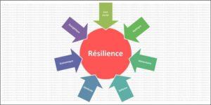 Read more about the article 7 fondamentaux de la résilience survivaliste