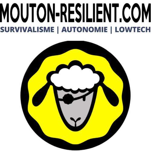 mouton-resilient.com