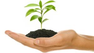 Read more about the article Et si le Néo-survivalisme n'était que du développement personnel ?